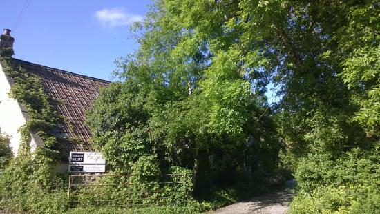 Nut Tree Farm: Driveway