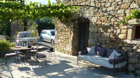 La Salamandre : La terrasse couverte d'une vigne