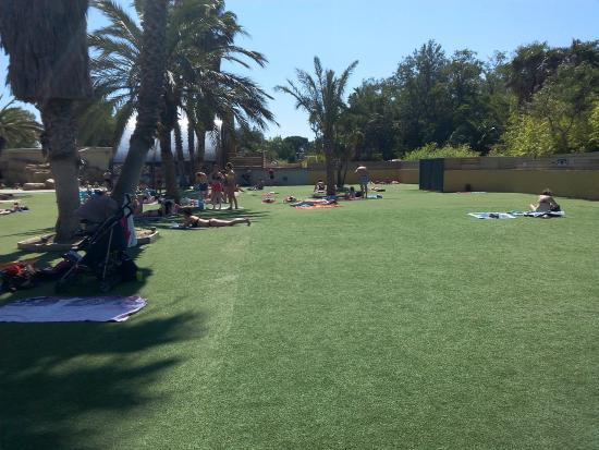 Une vue de la piscine picture of camping la sirene for Camping sanary sur mer avec piscine