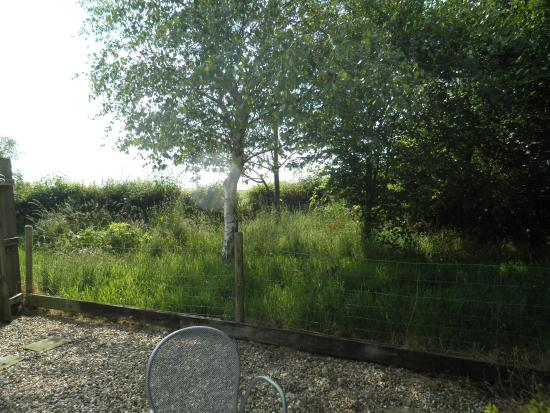 Stelling Minnis, UK : an actual view from the back patio