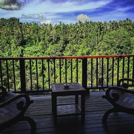 Nandini Bali Jungle Resort & Spa : Balcony view