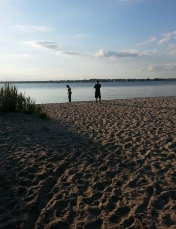 Cattus Island County Park: Beach at the end of the main trail
