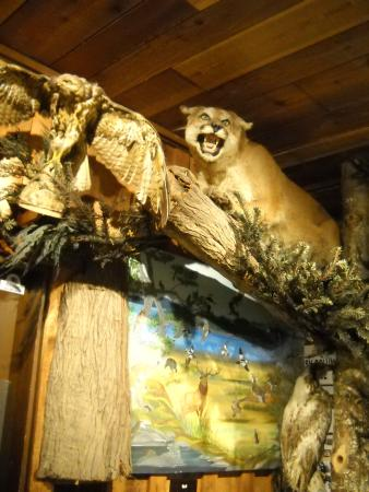 The Sooke Region Museum : Nice displays inside