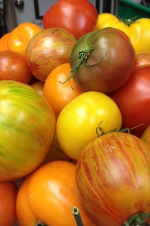 Vero Bistro Moderne : Hotchkiss Heirloom Tomatoes