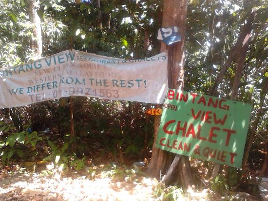 Bintang View Chalet and Restaurant: No caminho