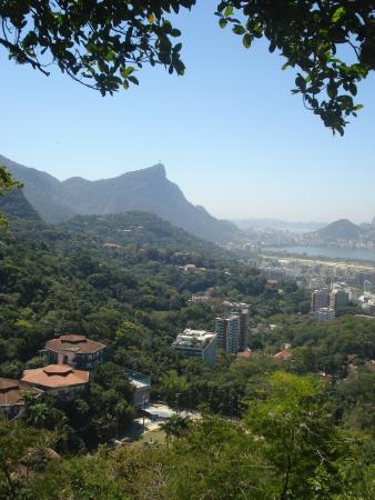 Favela Adventures: The view from the top of the favela