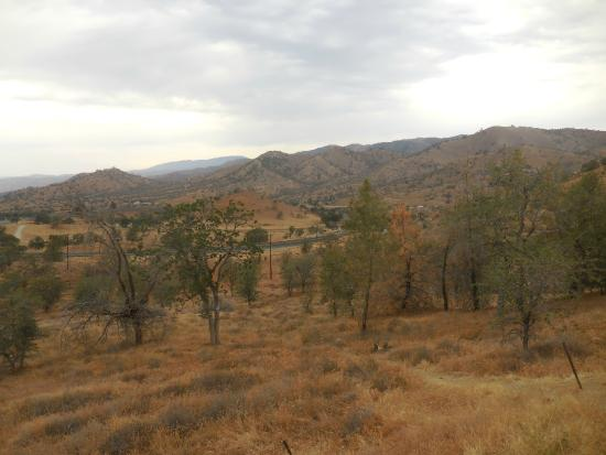 Tehachapi Loop: Lots of brown in the summer drought