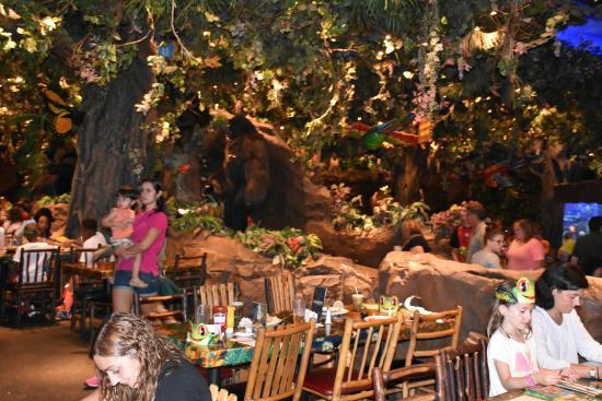 Rainforest Cafe Animal Kingdom Reviews