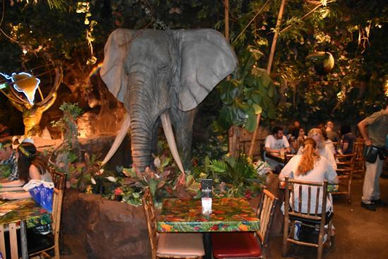 Rainforest Cafe Parking San Antonio