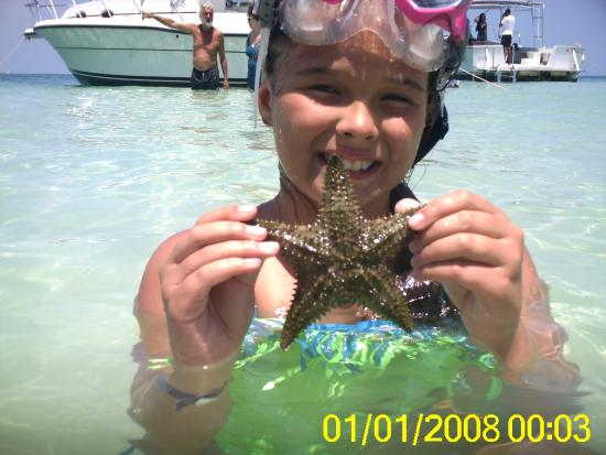 George Town, Grand Cayman: Starfish Point
