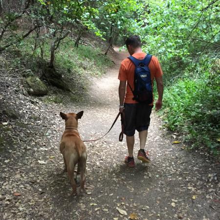Sanborn Park: Trail hiking