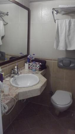 Halici Hotel: kamer