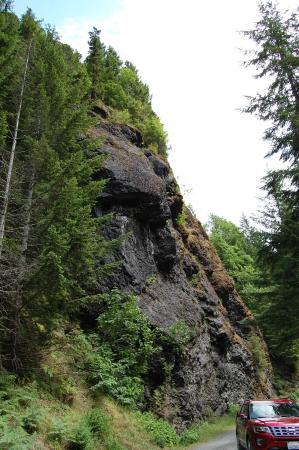 Hood Canal Adventures: Trekking Option