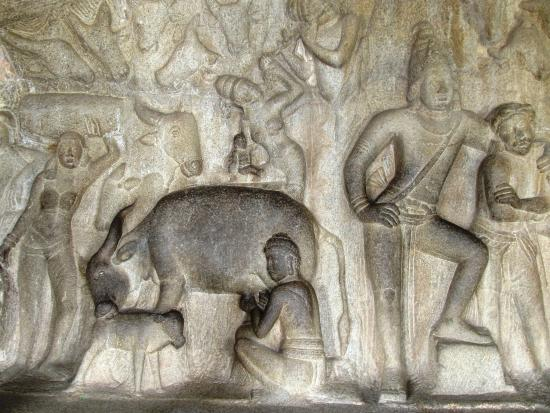Krishna Mandapam: A cow milking process under Govardhan mountain