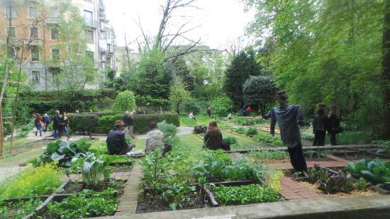 Jardins picture of orto botanico di brera milan tripadvisor