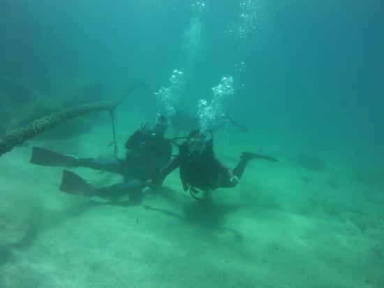 Diving picture of deep blue diving base caleta de fuste - Dive deep blue ...