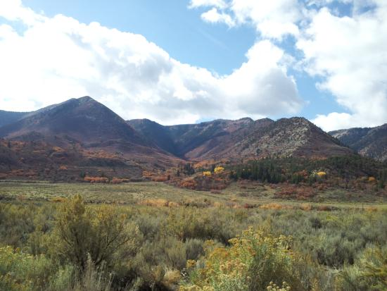 Fall colors at The Hogh Lonesome Ranch