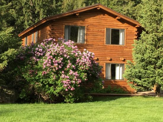 Víctor, ID: Ranch House with largest lilac bush we've ever seen!