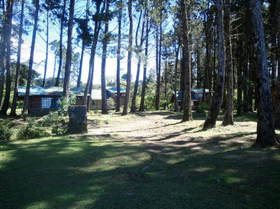 Cabanas Las Ardillas: group of cabins in the forest