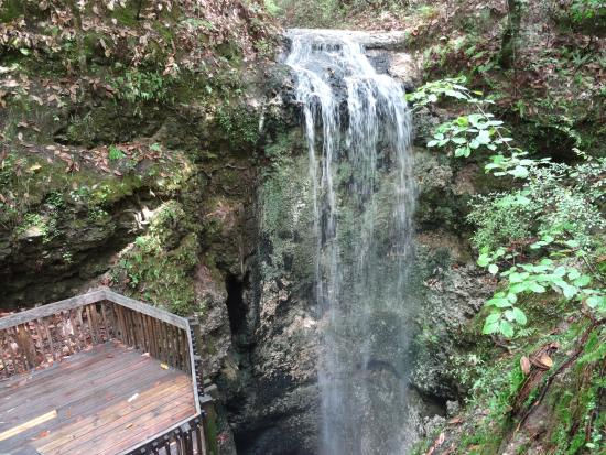 waterfall - Picture of Falling Waters State Park, Chipley ...