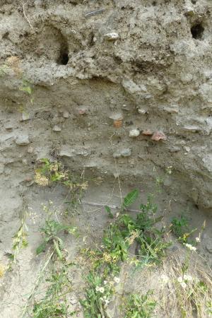 Ancient Town of Scupi: Scupi graveyard excavations
