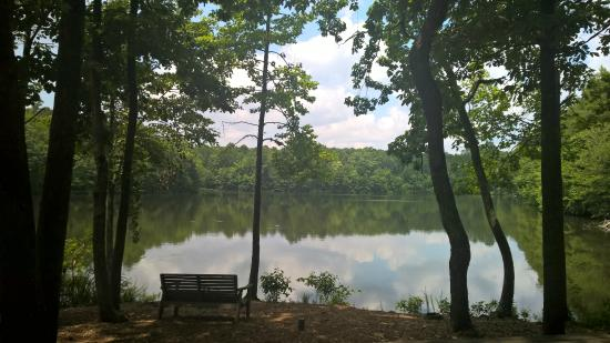 Huntsville, AL: Beautiful view from our picnic tables