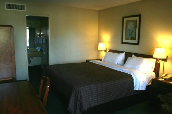 Vagabond Inn Costa Mesa/Orange County Airport: Single King Bedroom
