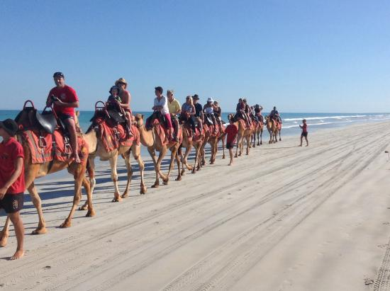 Seashells Broome: A slow camel ride along Cable Beach
