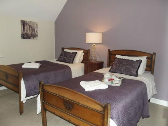 Meath Arms Country Inn: Twin Room
