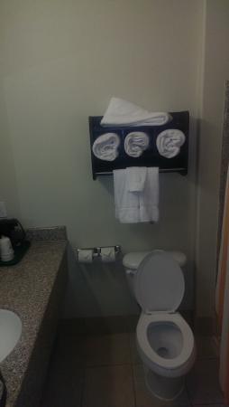 La Quinta Inn & Suites San Antonio The Dominion : rest room