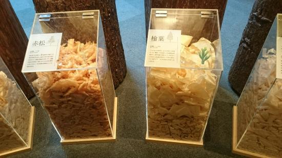Takenaka Carpentry Tools Museum: カンナの削りくず  ロッカーも木製