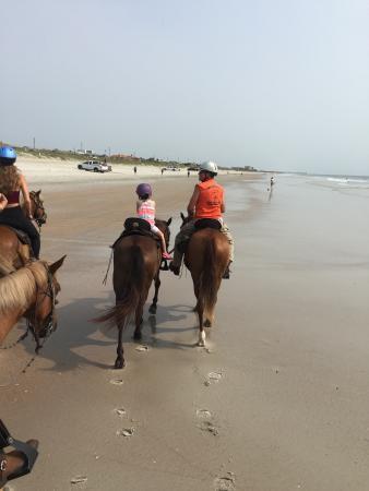 Happy Trails Walking Horses Foto