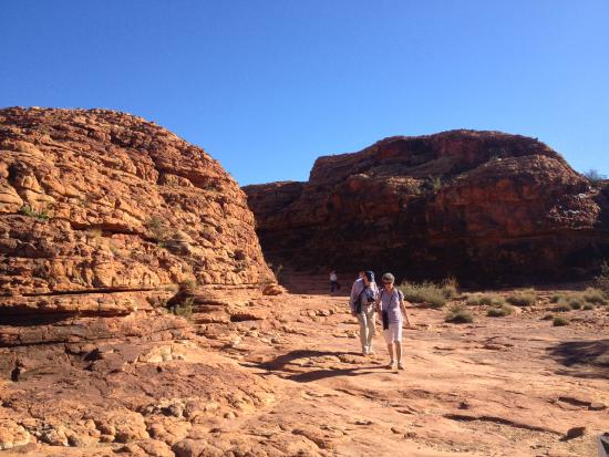 Kings Canyon Tour - ATT kings : Stunning scenery