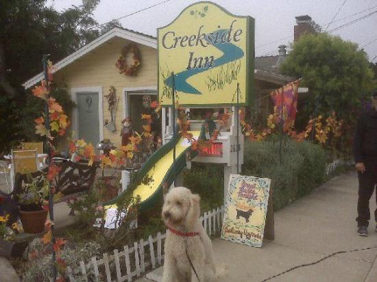 Creekside Inn: Pet friendly lodging