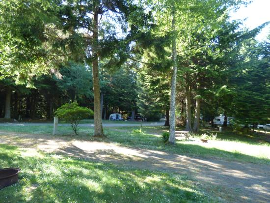 Eagles Nest Resort: Back area campsites