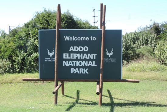 Aloe Again Beach Accommodation: Addo Elephant Park