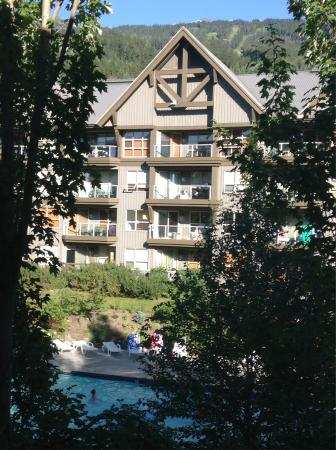 Aspens on Blackcomb: Our view of the mountain and pool
