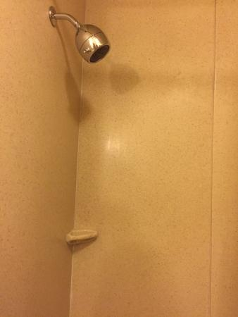 Comfort Suites Forest Park: photo1.jpg