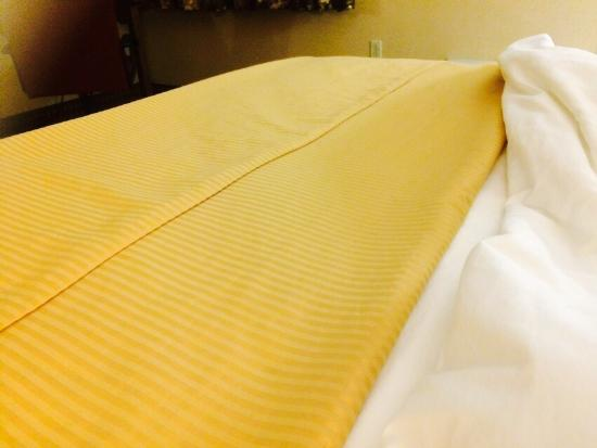 Clarion Hotel - The Belle: Moderate price and pet friendly