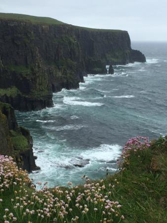Clare Coastal Walk Project: Cliffs of Moher, May 2015
