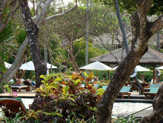 Garden Tour at Bali Hyatt : Hotel Area