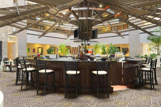Embassy Suites by Hilton Orlando - International Drive / Jamaican Court: Managers Reception