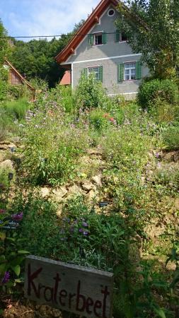Die Amtmann - Genussladen, Naturgarten und Hofcafe