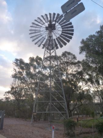 Robinvale, Australia: Windmill