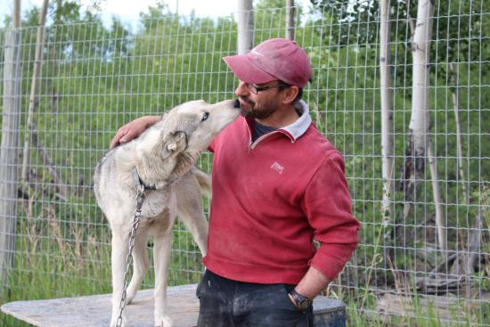 Jean Marc and one of his sled dogs at Takhini River Lodge