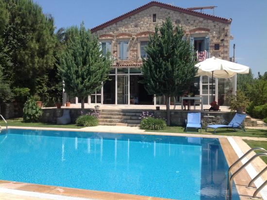 Alacati Zeytin Konak Hotel : Pool by Blue and Red House