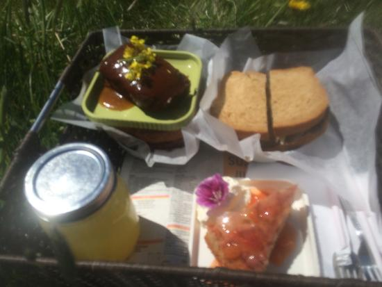 Lighthouse Picnics: Pictures from June 18th, 2015