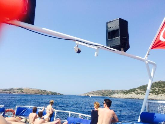 Ozzlife Boat-Private Tours - Picture of Ozzlife Boat ...