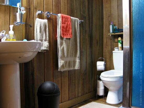 Talparo, Trinidad: bathroom