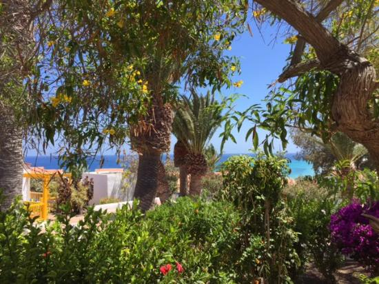 Aldiana Fuerteventura : Blick von unserer Terrasse